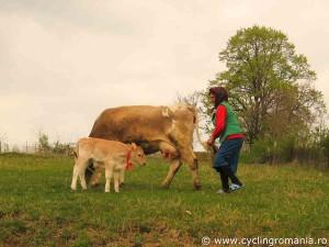 Villager-guarding-her-animals