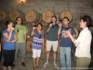 Wine-tasting-session-at-the-wine-cellar