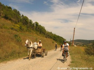 10-Meeting-horse-carts-on-our-way