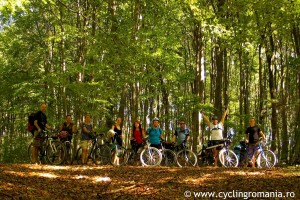 14-Cycling-through-beautiful-forests