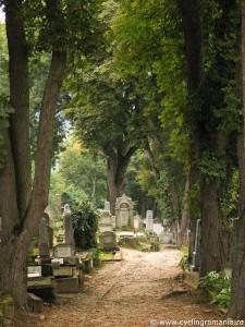 24-Saxon-graveyard-in-Sighisoara