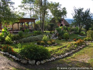 35-Beautifully-maintained-garden-in-Homorod