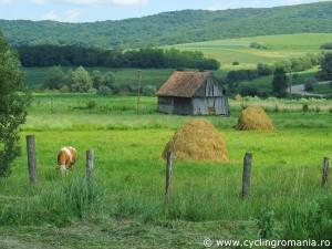 41-Transylvanian-pristine-landscape